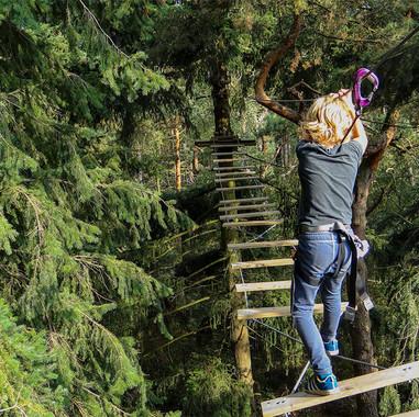 kids-climbing-forest.jpg