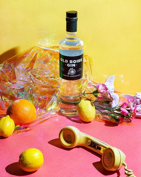 OldBoise.Gin(1).jpg