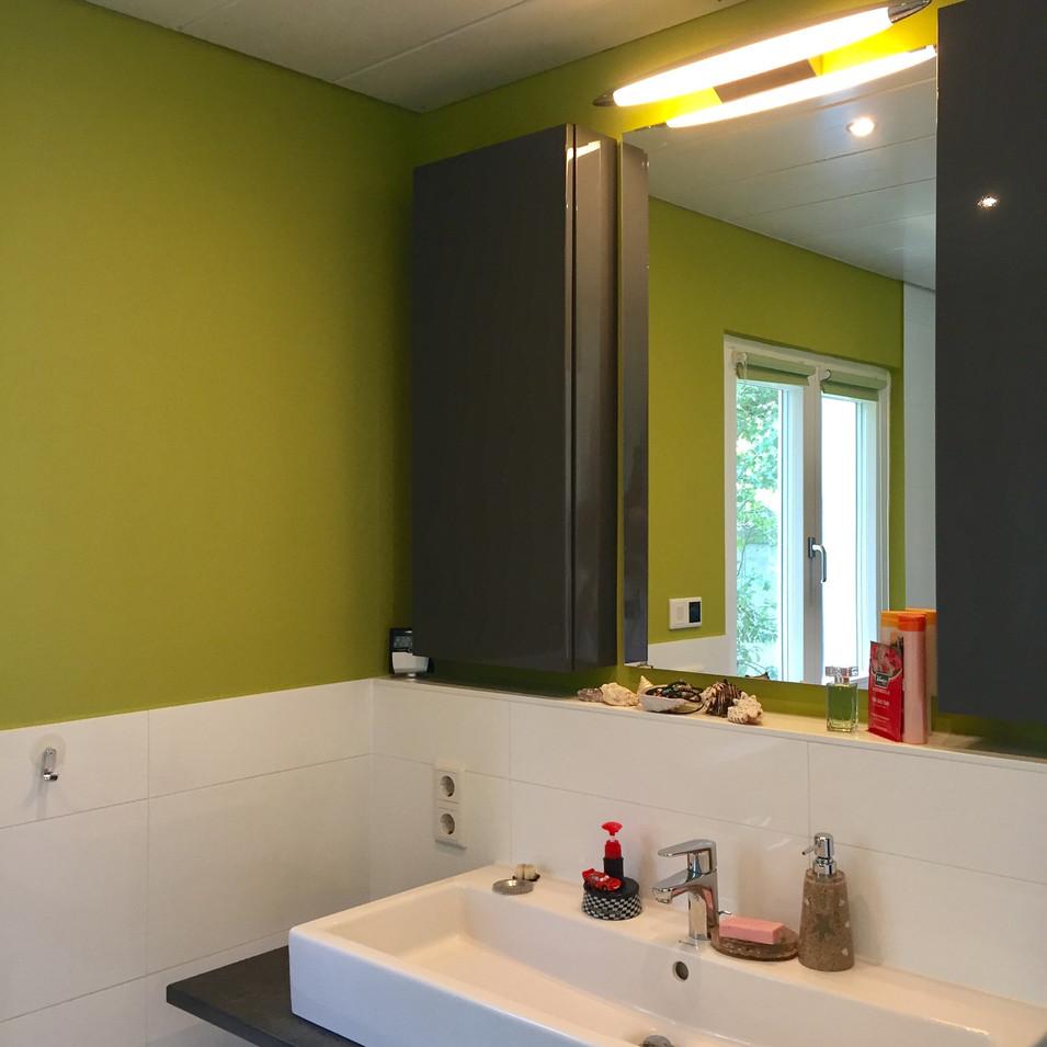 kt.color 43.6 Vert Olive