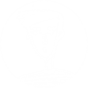 Scott-07.png
