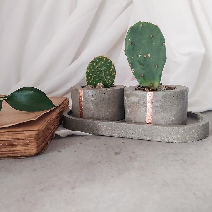concrete and copper planter with cactus plant.jpg