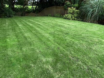 Green-grass.png