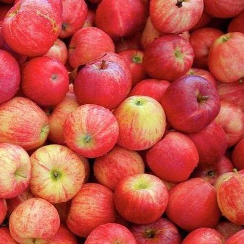 Gala Apples - per lb