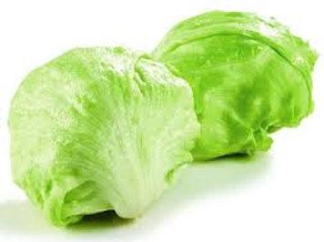 Iceberg Lettuce - each