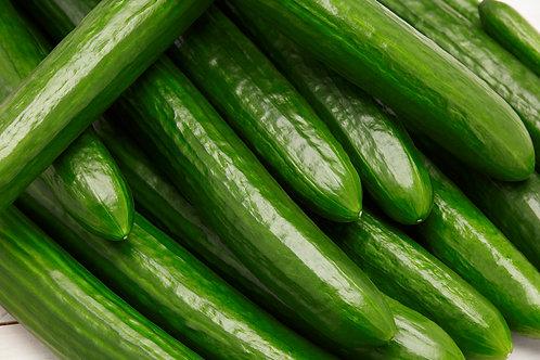 English Cucumber - each