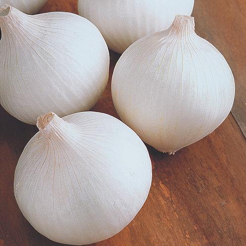 White Onions - 2 lb bag