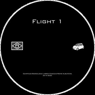 Flight 1 Disc.png