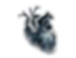 constelations heart.png