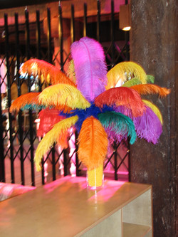 Carnival Feather Centre Piece / Colourful Feathers