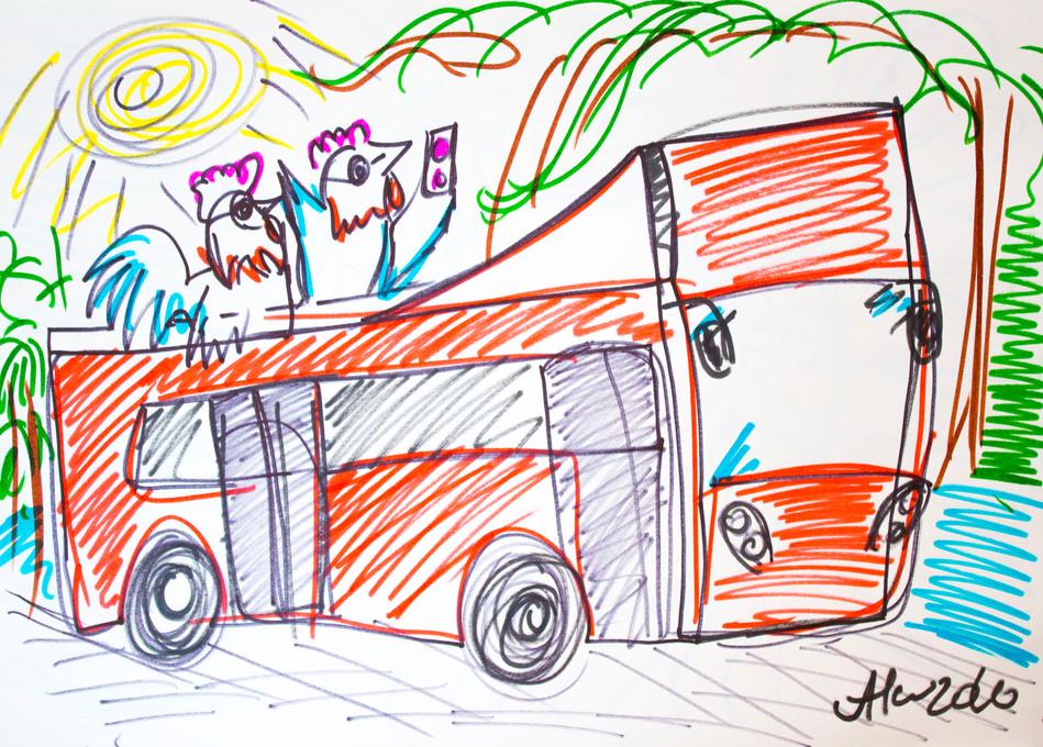 roosters bus lisbon.JPG