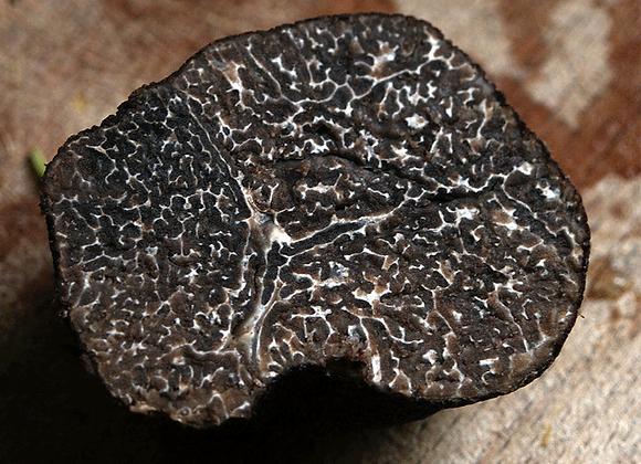 Black Truffle Whole - Melanosporum