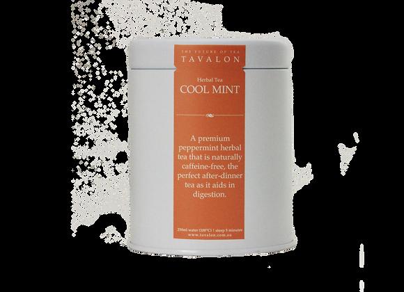 """Cool mint"" - White Tea"