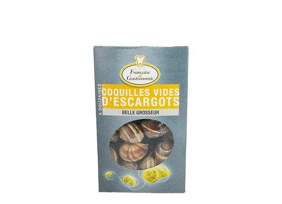Snails Shells 5 dozen