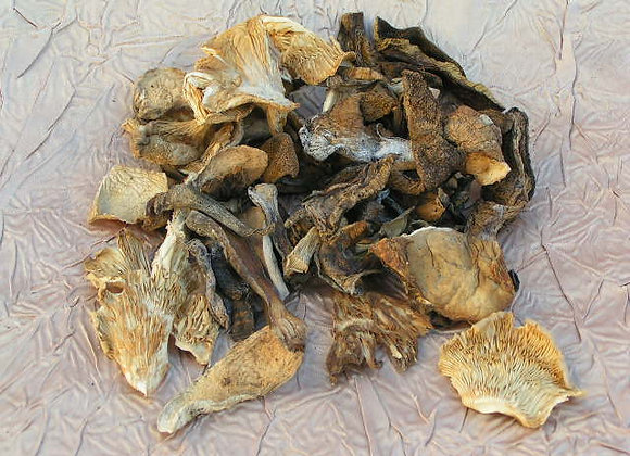 Dried Mixed Forest Mushrooms 200g