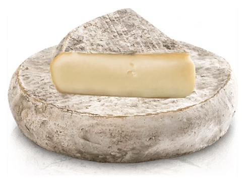Saint-Nectaire Cheese