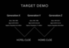 target demo.png
