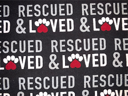 Animal Rescue and Loved