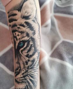 tiger-forearm-2