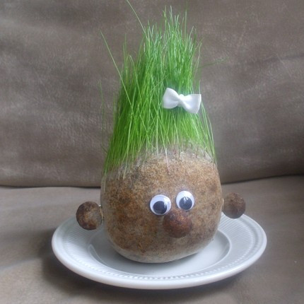 sprouting grass hair