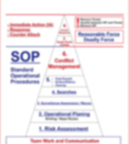 pyramid-planning of cp course-2017.jpg