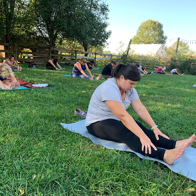 Yoga on the Farm at Rocklands Farm Winery