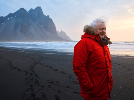 The Attenborough Challenge: A Life on Our Planet