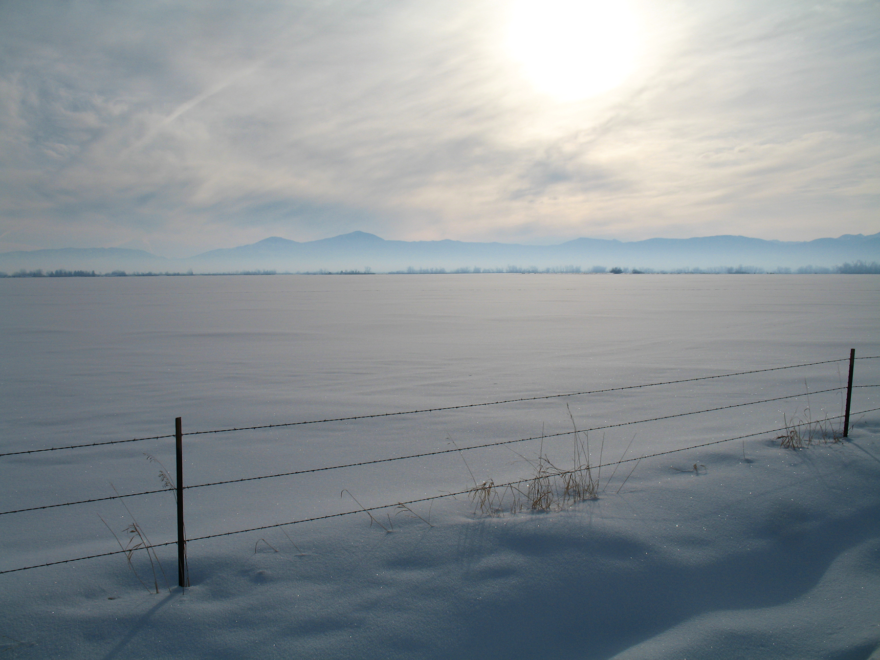 view from studio winter