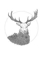deerfield logo final_2.2.jpg