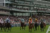 York Races.jpg