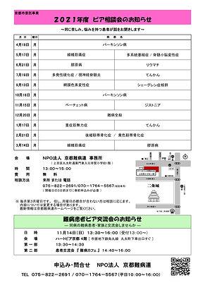 (案)ピア相談会(年間)チラシ-1.jpg