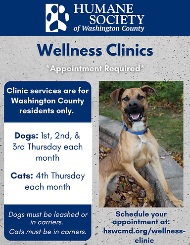 Wellness Clinics (3).png