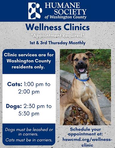 Wellness Clinics (4).png