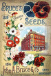 Seedy Catalogues
