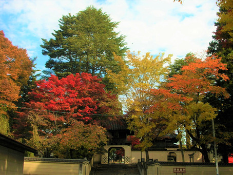 盛岡市鉈屋町界隈にも「秋」が来ました。