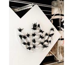 adidas décoration végétale rouen et paris