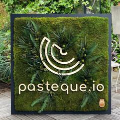 Pasteque.io logo végétal entreprise