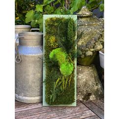 tableau végétal, décoration végétale, rouen et paris