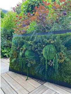 mur végétal, creation vegetale rouen et paris