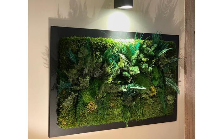 décoration naturelle intérieures, mur végétal rouen et Paris