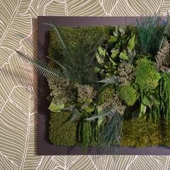 cadre vert végétal rouen et paris