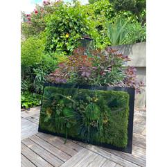 mur végétal, décoration végétale, rouen paris