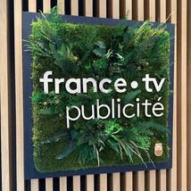 Logo végétal, France TV