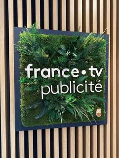 logo végétal entreprise, France TV publicité