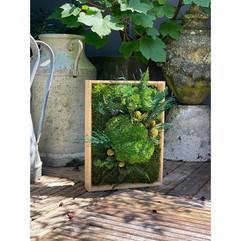 cadre végétal, décoration végétale, rouen et paris