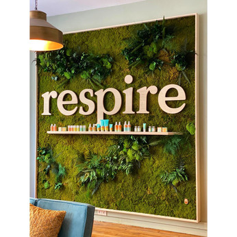 Tableau végétal stabilisé | Cadres végétal intérieur | Création végétale stabilisée | mur végétal | tableaux végétaux stabilisés | green