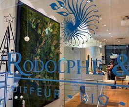 mur végétal entreprise, logo végétal, décoration végétale magasin