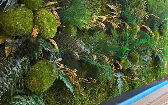 décoration naturelle, cadre végétal rouen et paris