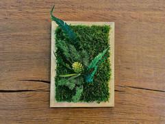 cadre végétal, décoration rouen et paris, green