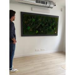 Benjamin Lucas, faubourg des plantes