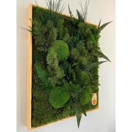 cadre végétal personnalisé sur mesure